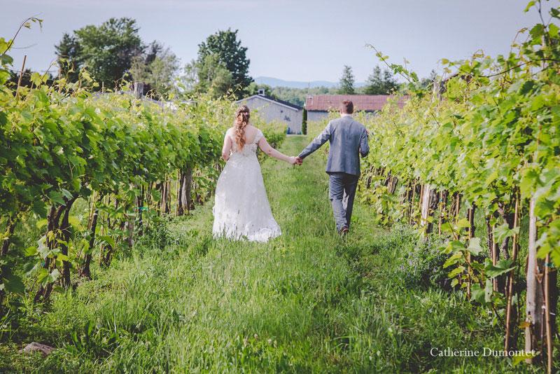 Les mariés marchent dans le vignoble