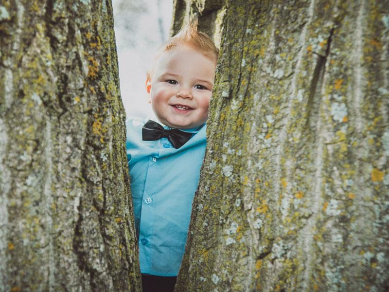 photo d'enfant debout dans un arbre