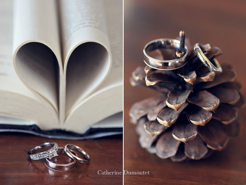 close-ups of the wedding rings